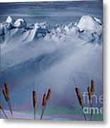 Above The Tree Line Metal Print by The Stone Age