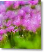 abstract Blurry pink flower background for backgrounds Metal Print
