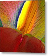 Abstract Iris 2 Metal Print