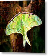 Abstract Luna Moth Painterly Metal Print