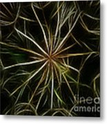 Abstract Of Nature 2 Metal Print