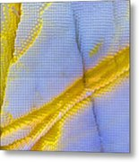 Abstract Of Picasso Jasper Metal Print