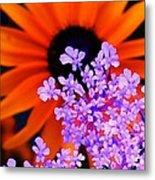 Abstract Orange And Purple Flower Metal Print