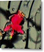 Abstract Red And Black Metal Print