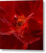 Abstract Red Rose 1a Metal Print