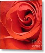 Abstract Orange Rose 9 Metal Print