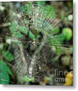 Abstract Spider Web Metal Print