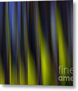 Abstract Vertical Red Yellow Blue And Green Metal Print