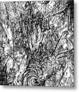 Abstraction B-w 0554 - Marucii Metal Print