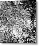 Abstraction B-w 0572 - Marucii Metal Print