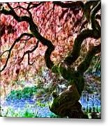Acer Abstract Metal Print