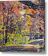 Acorn Lake Series 001 Metal Print