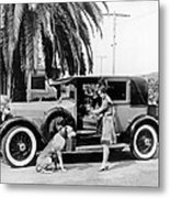 Actress And Dogs Go On Trip Metal Print