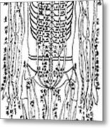 Acupuncture Chart Metal Print