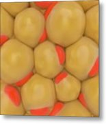 Adipose Tissue Metal Print
