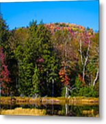 Adirondack Color IIi Metal Print