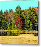 Adirondack Color Iv Metal Print