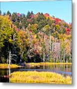 Adirondack Color V Metal Print