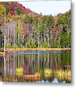 Adirondack Color Viii Metal Print