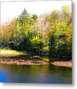 Adirondack Color X Metal Print