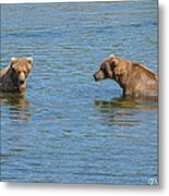 Affectionate Stare Metal Print