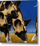 Africa By The Pack... Metal Print