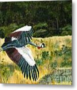 African Crowned Crane Painting Metal Print