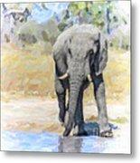 African Elephant At Waterhole Metal Print