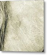 African Elephant Detail With Eye Metal Print