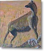 African Hyena Metal Print
