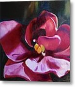 African Violet In The Light Metal Print