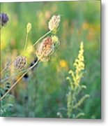 After August Metal Print