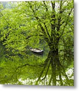 After The Rain On The Valley River Metal Print