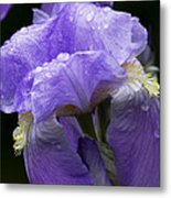 After The Shower Metal Print
