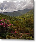 After The Storm At Graveyard Fields Metal Print