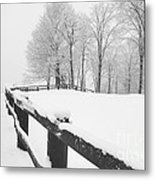 After The Winter Storm Metal Print