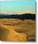Afternoon At Oregon Dunes Metal Print
