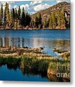 Afternoon At Sprague Lake Metal Print