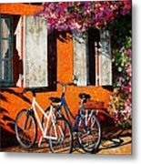 Afternoon Delight Metal Print by Lenore Crawford