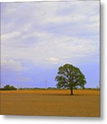 Afternoon In The Country Metal Print