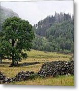 Afternoon In The Lake District Metal Print