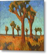 Afternoon Light At Joshua Tree Metal Print