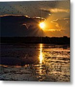 Late Afternoon Reflection Metal Print