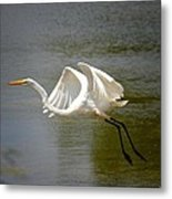 Afternoon Takeoff Metal Print