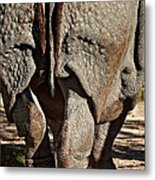 Afterthought Metal Print