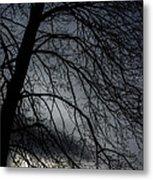 Against A Winter Sky Metal Print
