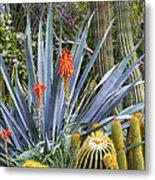 Agave And Cactus Metal Print