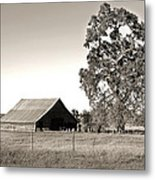 Ageless With Time Metal Print