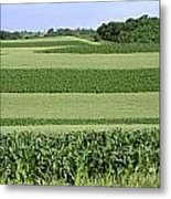 Agriculture - Contour Strips Of Mid Metal Print by Timothy Hearsum