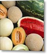 Agriculture - Mixed Melons, Watermelon Metal Print